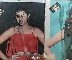 Hot tribute to south Indian actress Nikki Galrani